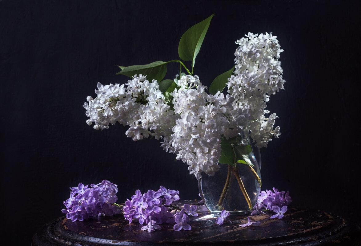 Белая сирень - Татьяна Курамшина