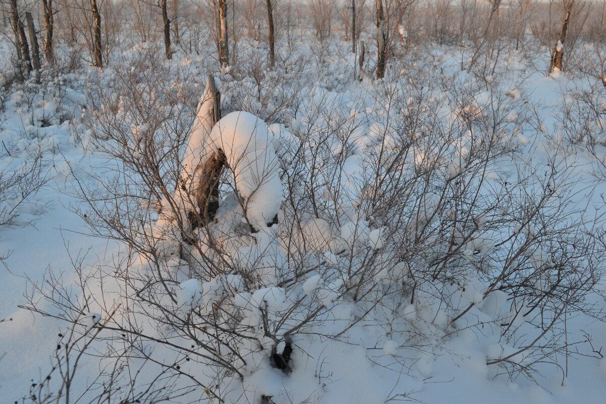 Ноябрьские снега... - Георгиевич