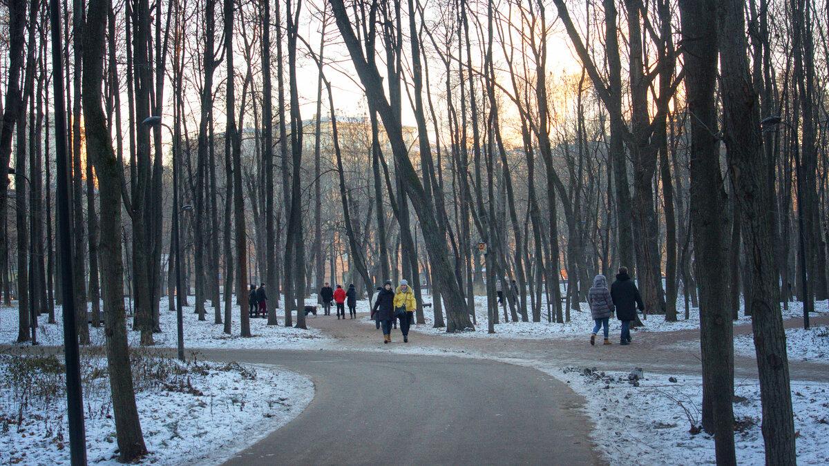 Вечер в парке - Михаил Танин
