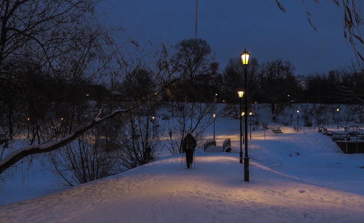 Пргулки в Вечрнем Парке - юрий поляков