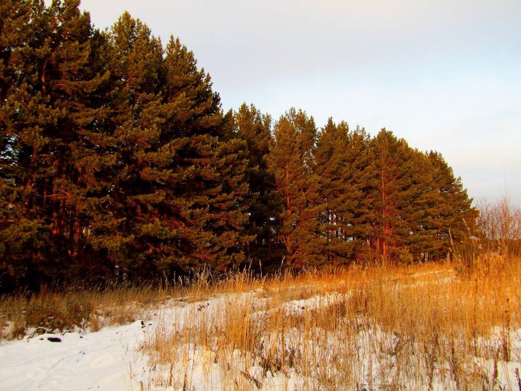 Зимние краски - Егор