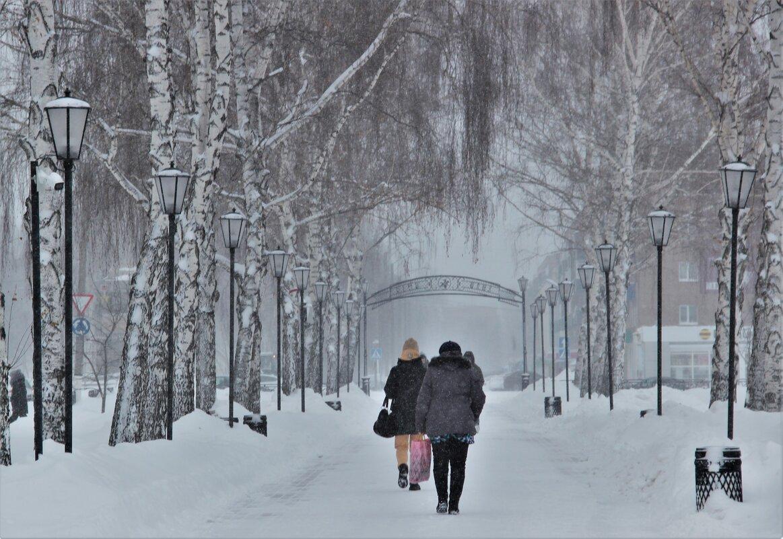 Снежный январь. - Венера Чуйкова