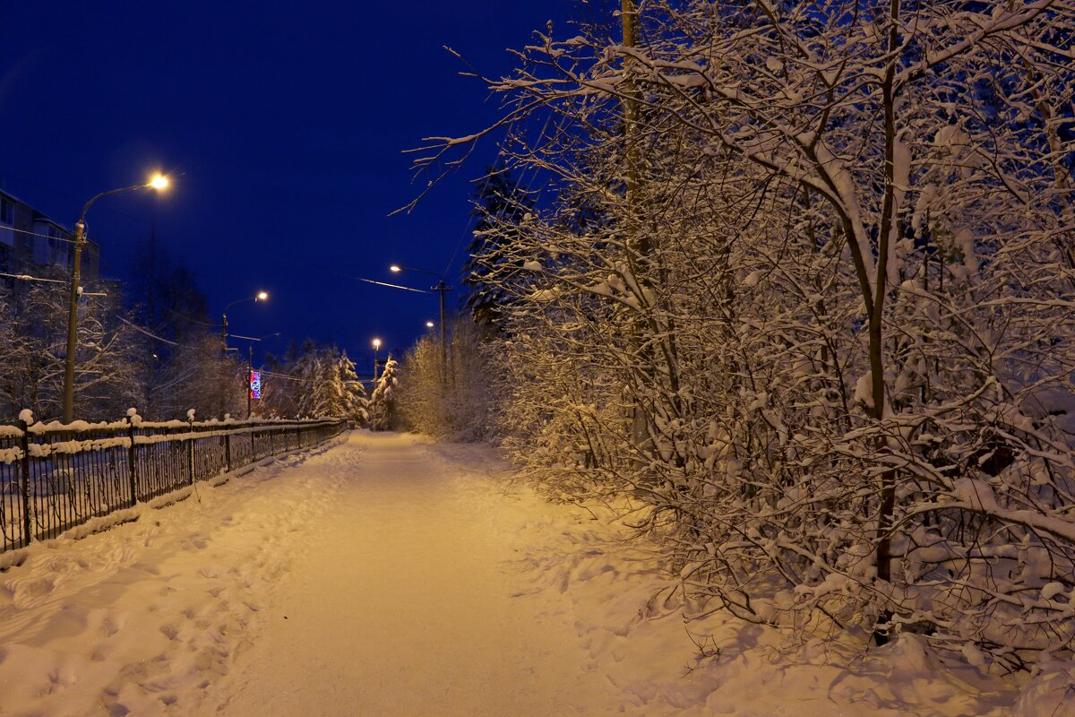 Вечерние прогулки - Ольга