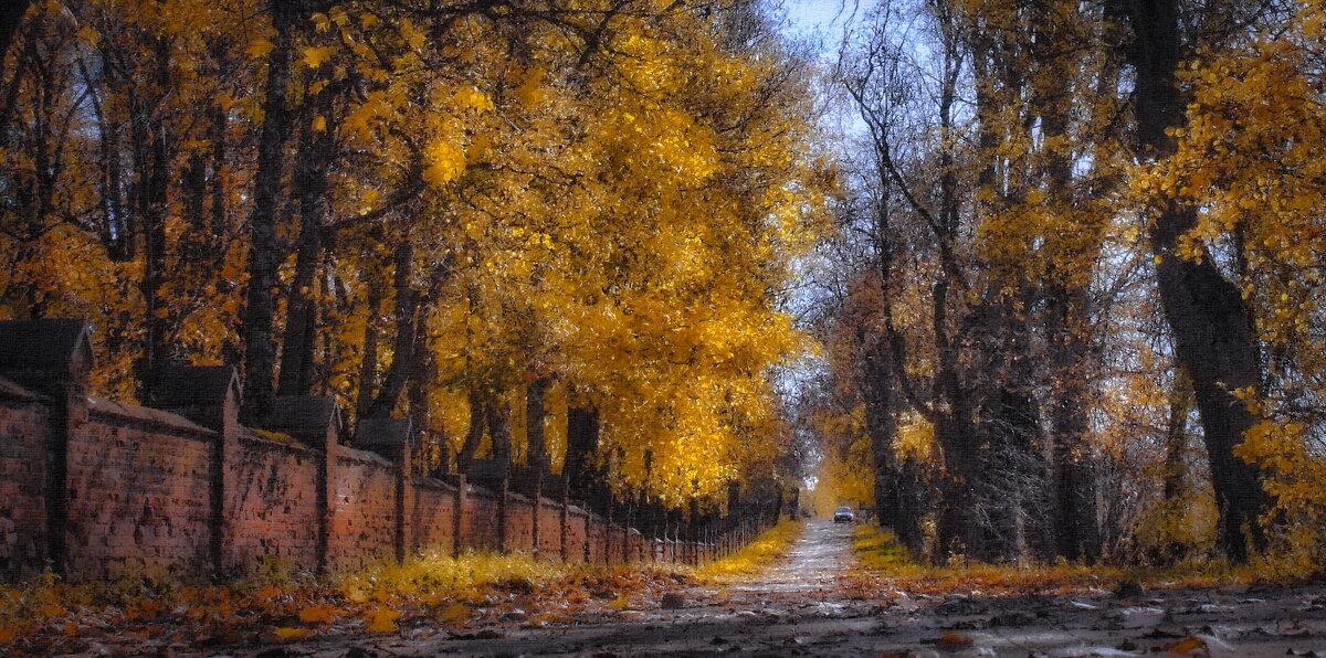 Янтарная осень (рис.) - Глeб ПЛATOB