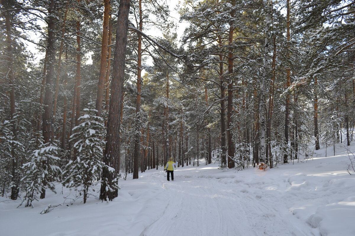 Хорошо скрипит снег...лесной туристский кросс. - Андрей Хлопонин