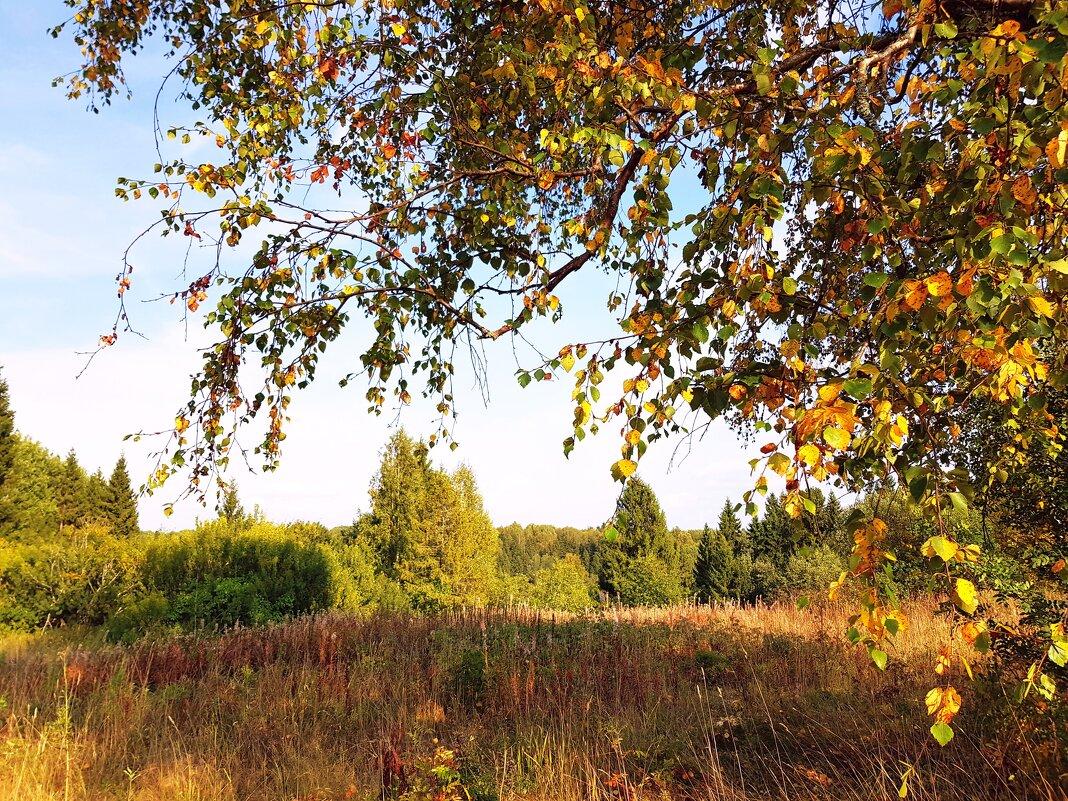 Осенний денек под Костромой... - ГЕНРИХ