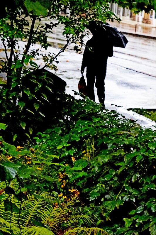 Дождливый  прохожий!?)) - Евгений