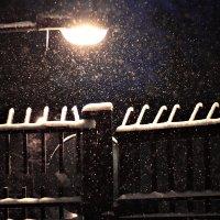 Зима. :: Павел Королев