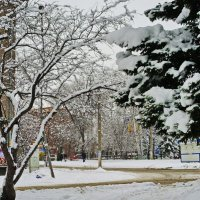 Зима. :: Владимир Михайлович Дадочкин
