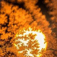 Ледяное солнце... :: Nikita Bykov