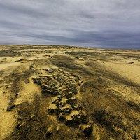 Пески Балтики :: Владимир Самсонов