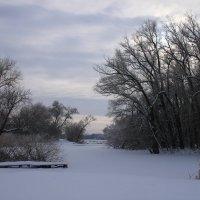 На зимней реке :: Алина Тазова