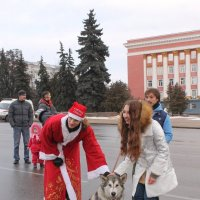 Щенок...))) :: Александр Герасенков