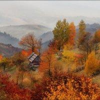 / Что такое осень ... / :: Влад Соколовский
