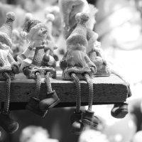 Венское Рождество :: Светлана Сироткина