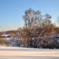 Мороз и солнце, день чудесный... :: Андрей В.