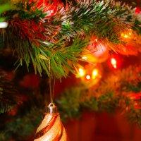 Новогоднее настроение :: Татьяна Басараб