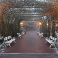 Романтичное местечко в парке :: Mariya laimite