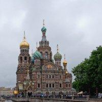 Прогулки по Питеру :: Serge Riazanov