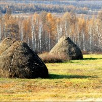 К зиме готовы... :: Сергей Данила