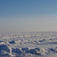 ледяная тишина :: Ольга Шарко