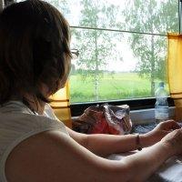 Широка страна моя родная! :: Ирина Данилова
