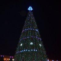 Новогоднее настроение :: Еркежан Танкаева