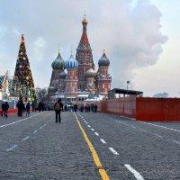А говорили- в Москве снег и медведи... :: Ирина Данилова