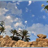Перед входом в аквапарк *World Wadi* в Дубае (ОАЭ) :: Евгений Печенин