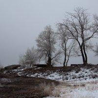Туман :: Dr. Olver