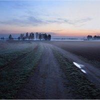 Дорога к рассвету :: Виктория Иванова