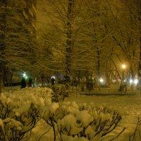 зима в городе :: Галина R...