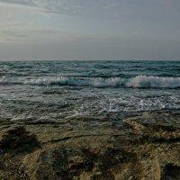Zima na Sredizemnom more :: susanna vasershtein