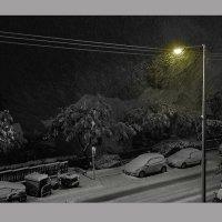 И вот - снежная буря, Израиль :: Борис Херсонский