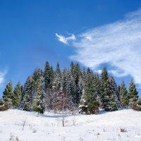 Зима пришла :: Aleksey N