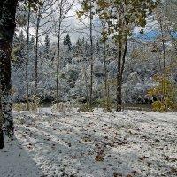 Осенний снег :: Boris Alabugin