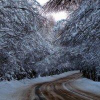 Зимний тоннель :: Сергей В. Комаров