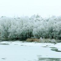 Зима на Ахтубе :: brewer Vladimir