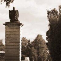 От ворот :: sv.kaschuk