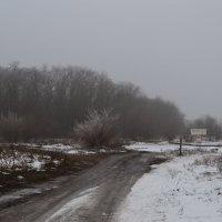 Зима :: Виктория Наход