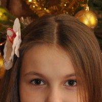 Новый год 2014 :: Вероника Васюченкова