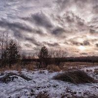 Январские облака :: Анатолий Тимофеев