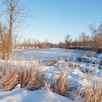 Зимой на Глубоком. :: Андрей Зайцев