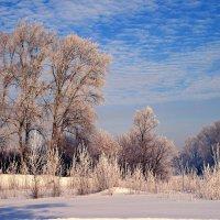 Декабрь :: Евгений Юрков