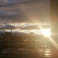 Утро  в  Лобне :: людмила токмакова