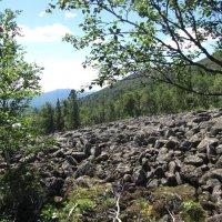 Каменная река :: Геннадий Ячменев