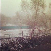 Туман :: Евгений Ткаченко