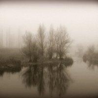 В тумане :: Алла Рыженко