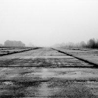 Бывшая взлетная, бывшего аэродрома :: Сергей Иванов
