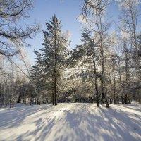 Мороз и Солнце... :: Сергей Адигамов